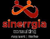 sinerrgia consulting